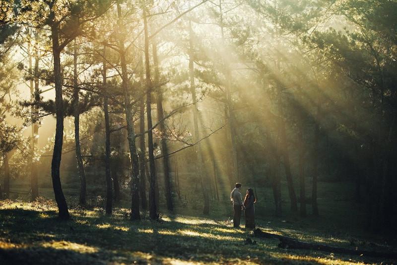 Đến Đà Lạt ghé Đồi Thông Hai Mộ nghe câu chuyện tình yêu đầy cảm động và bí ẩn - ảnh 1